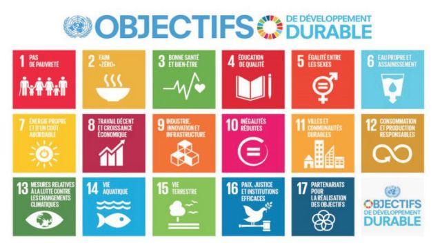 Objectifs DD 2015